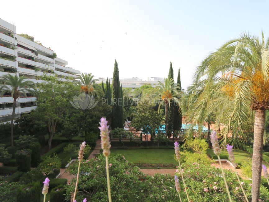 Newly renovated three bedroom apartment in Don Gonzalo