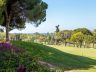 Balinese style villa for sale on the first line of golf in Rio Real Marbella