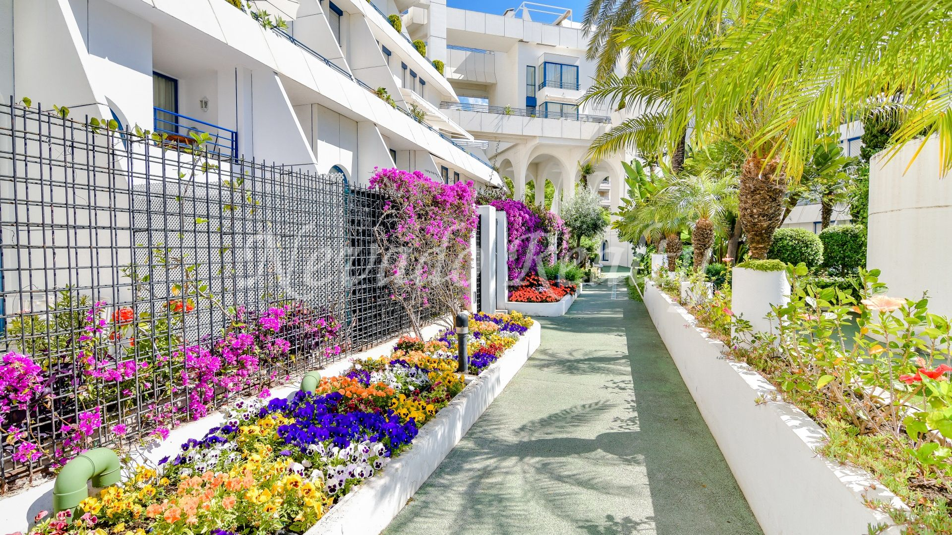 Spacious ground floor apartment with private pool just steps from the beach