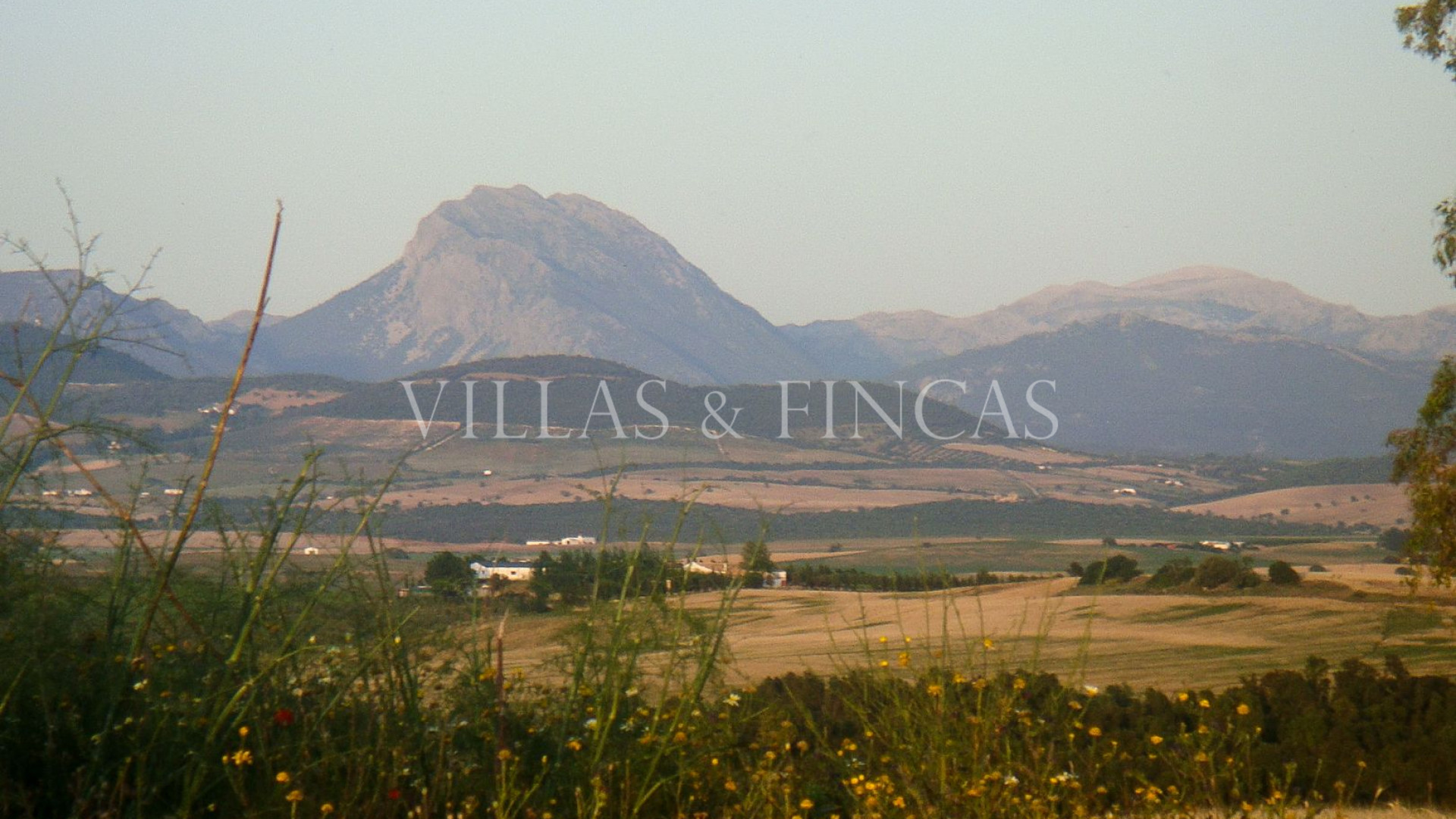 Plot for sale in Arcos de la Frontera