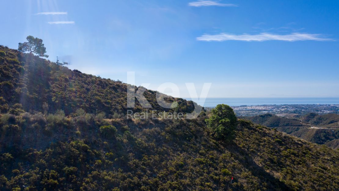 Amazing plot with sea and golf views in Real de La Quinta, Benahavis