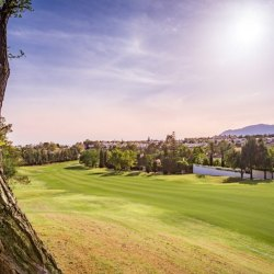 Guadalmina Alta, life surrounded by golfing greenery