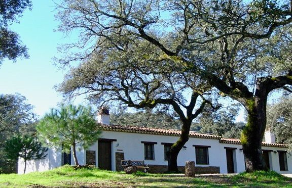 Almonaster la Real, Country Estate for sale in Huelva Province - Great Business Opportunity