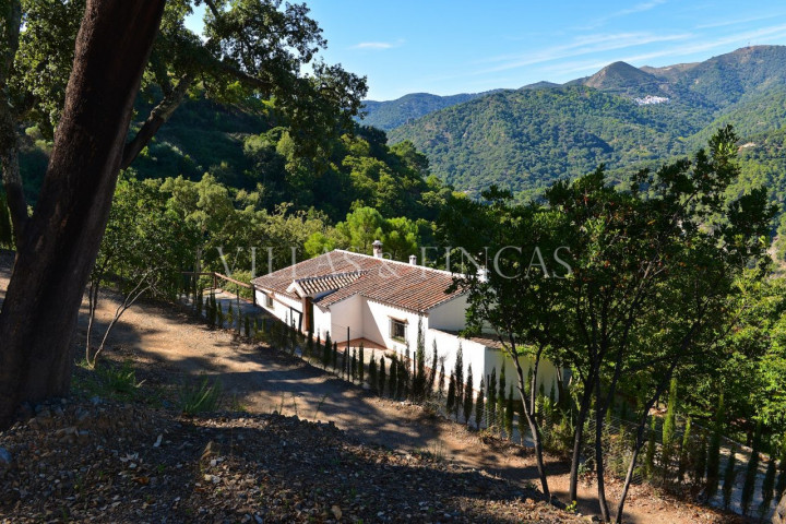 Genalguacil, Finca in the mountains, breathtaking natural setting