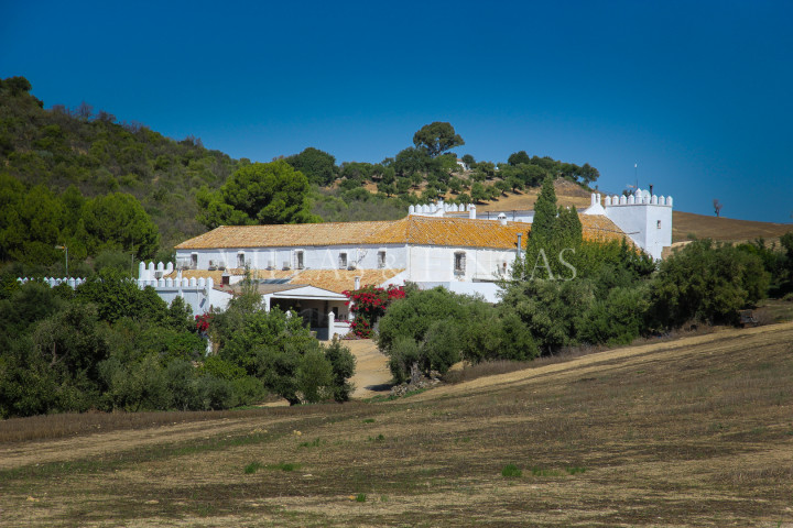 Arcos de la Frontera, Large cortijo, Country Estate, Hacienda with olive grove
