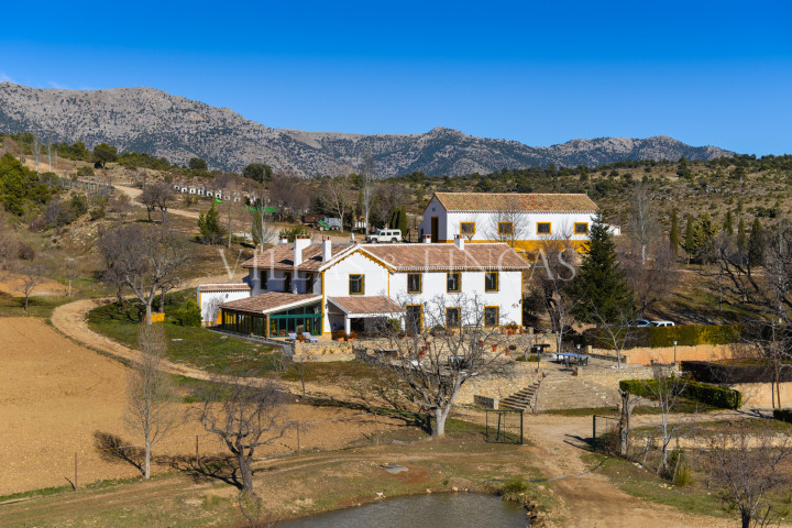 Granada, Big game shooting estate with reformed cortijo