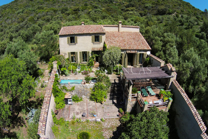 El Bosque, Charming finca with olive grove