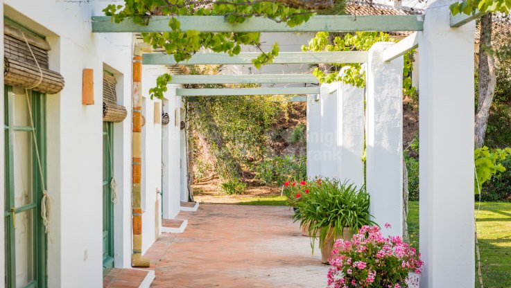 Charming finca in tranquil setting near Malaga - Finca for sale in Coin