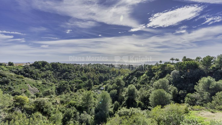 Penthouse with sea and countryside views - Penthouse for sale in Condado de Sierra Blanca, Marbella Golden Mile