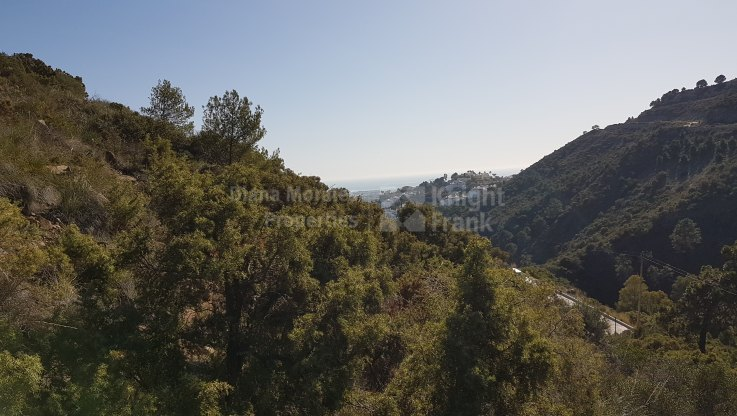 Two plots with views in El Madroñal