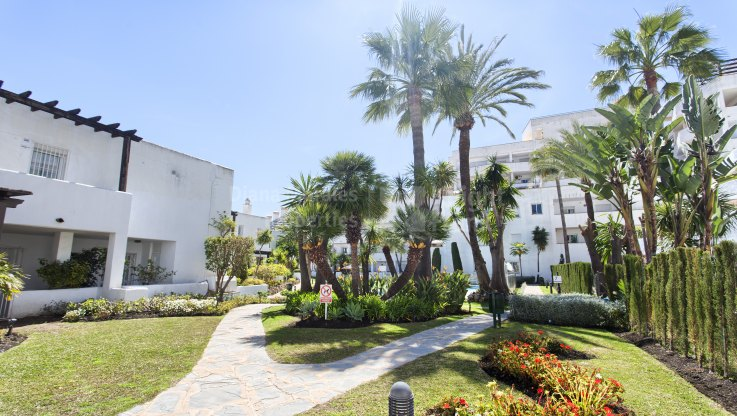 Renovated Apartment in Convenient Location - Apartment for sale in Jardines de Andalucia, Nueva Andalucia