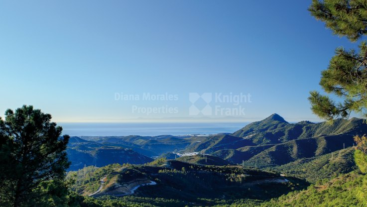 Building Land for Sale in the Exclusive Estate of La Zagaleta - Plot for sale in La Zagaleta, Benahavis