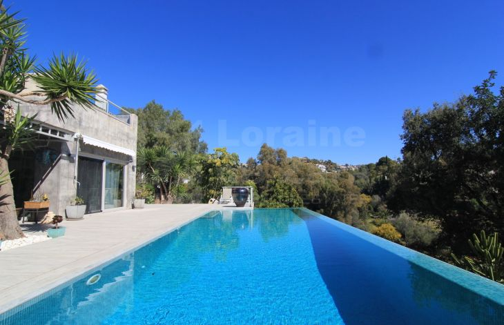 Spectacular villa with guest house in Fuente del Espanto.