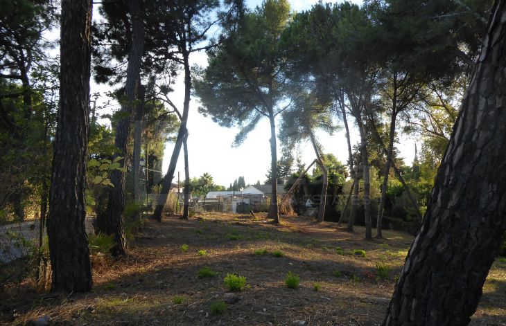 Plot with basic execution project and license on Marbella's Golden Mile