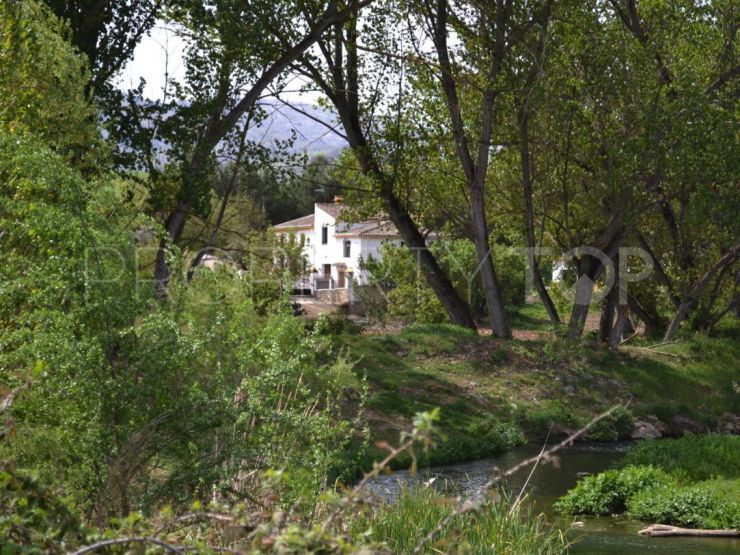 Rustic plot for sale in Ronda | Cleox Inversiones