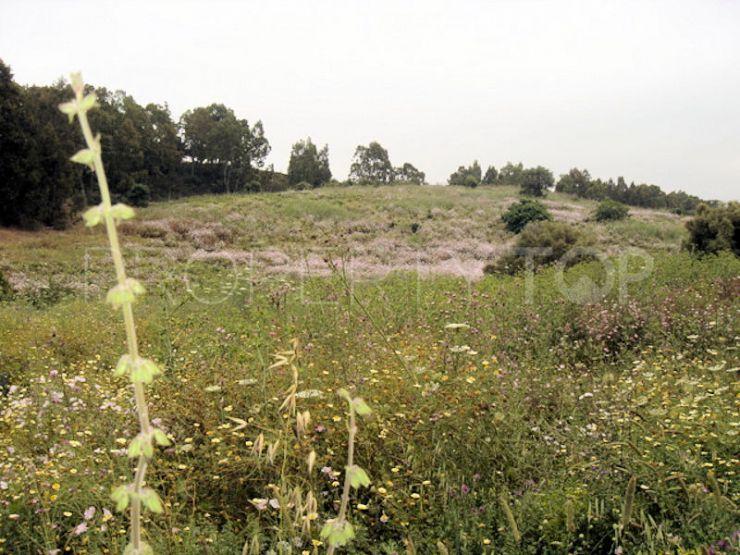 For sale Jimena de La Frontera plot | Goli Real Estate