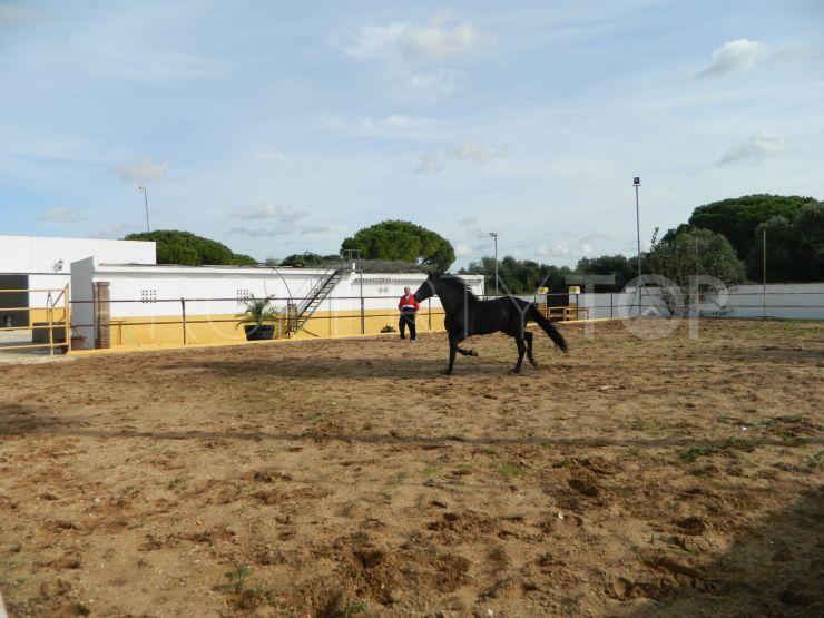 Finca with 7 bedrooms in Chiclana de la Frontera   KS Sotheby's International Realty