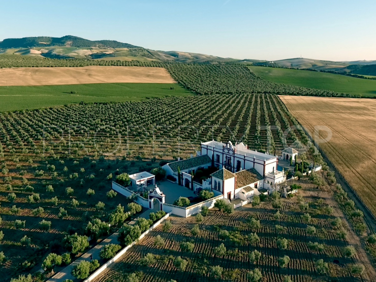 Cortijo in Montellano with 7 bedrooms | House & Country Real Estate