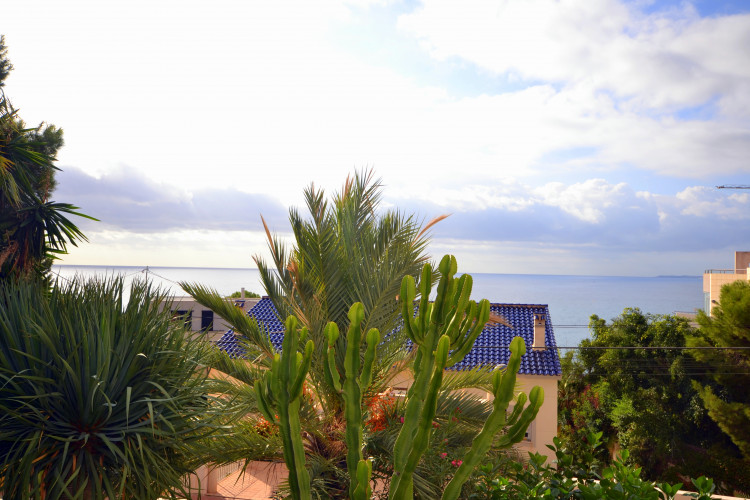 Wonderful property consisting of a main house and guest huose with pool