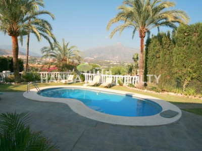 Nueva Andalucia Villa for rent