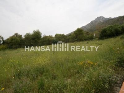 Fantastic plot in Sierra Blanca