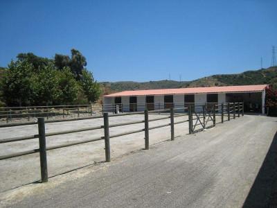 Finca for sale in San Martin del Tesorillo