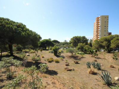 Residential Plot for sale in Marbesa - Marbella East Residential Plot - TMRO-R2078573