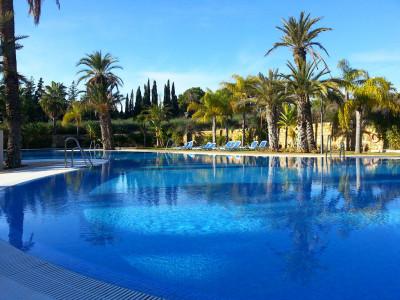 Apartment for sale in Nueva Andalucia - Nueva Andalucia Apartment - TMRO-R3198784