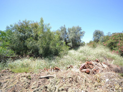 Residential Plot for sale in Nueva Andalucia
