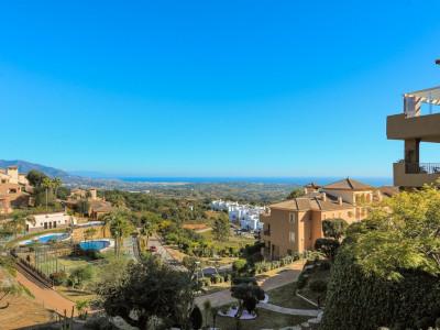 Ground Floor Apartment for sale in Elviria - Marbella East Ground Floor Apartment - TMRO-R3336799