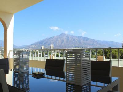 Ground Floor Apartment for sale in Nueva Andalucia - Nueva Andalucia Ground Floor Apartment - TMRO-R3015050