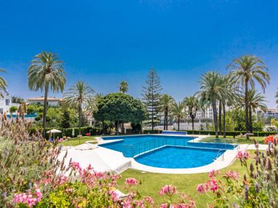 Penthouse for sale in Nueva Andalucia - Nueva Andalucia Penthouse - TMRO-R3480856