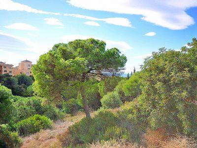 Parcelle en Elviria, terrain à bâtir orienté sud-est avec vue sur la mer.