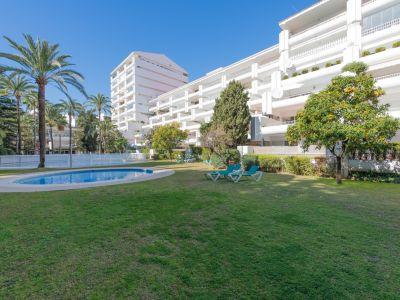 Beachside apartment next to Hotel Don Pepe