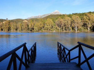 Impresionante ático frente al lago