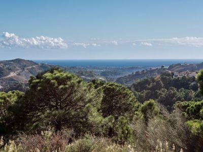 Grundstück mit exzellentem Panoramablick