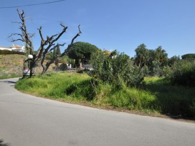Plot with project in the heart of Elvira.