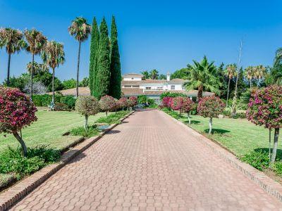 Impressive Beachside Estate in Guadalmina