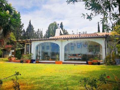 Finca in El Velerin, Estepona