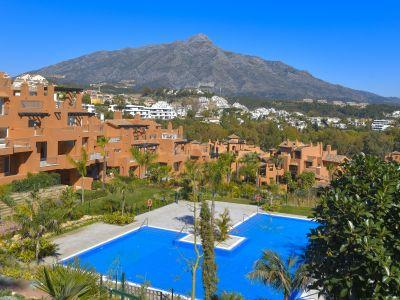 Ground Floor Apartment in La Cerquilla, Marbella