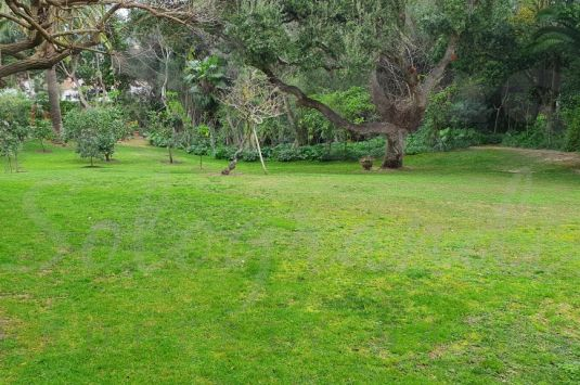 Plot for Sale in Reyes y Reinas - Sotogrande Plot