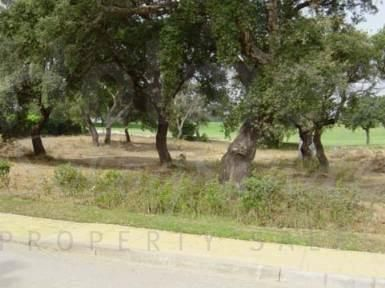 Plot for Sale in San Roque