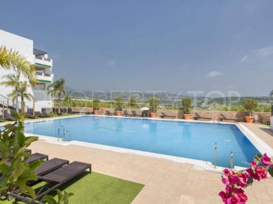 Buy apartment in Valle Romano with 1 bedroom | Dream Property Marbella