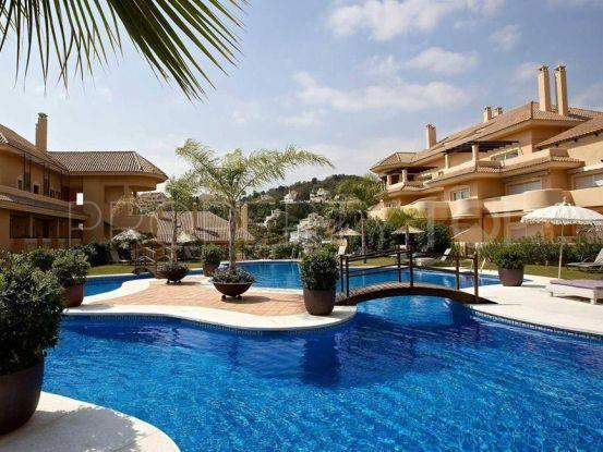 For sale ground floor apartment in Aloha, Nueva Andalucia   Always Marbella