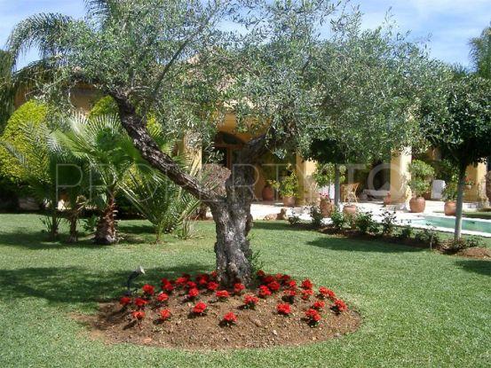 3 bedrooms villa in Guadalmina Baja | Amrein Fischer