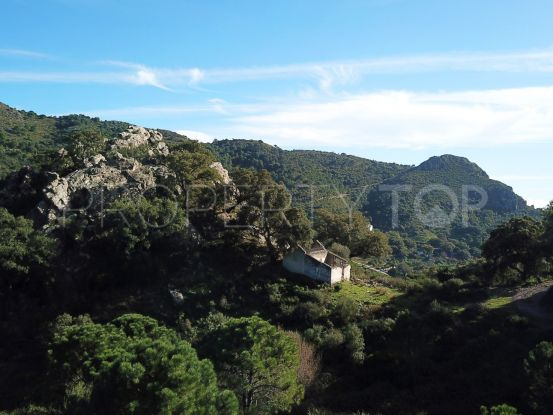 Plot for sale in Casares | Terra Realty