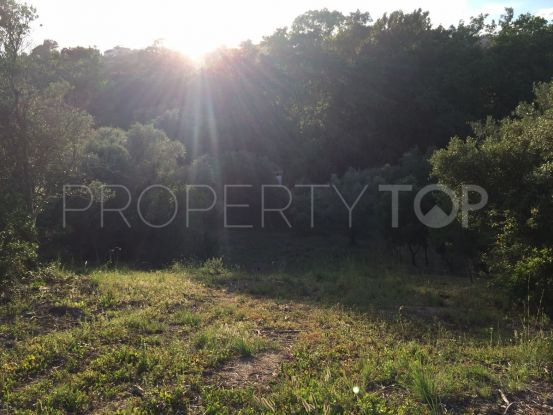 For sale Ricmar plot | Escanda Properties