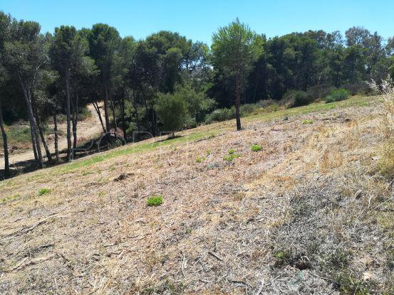 Plot in La Reserva for sale | Consuelo Silva Real Estate