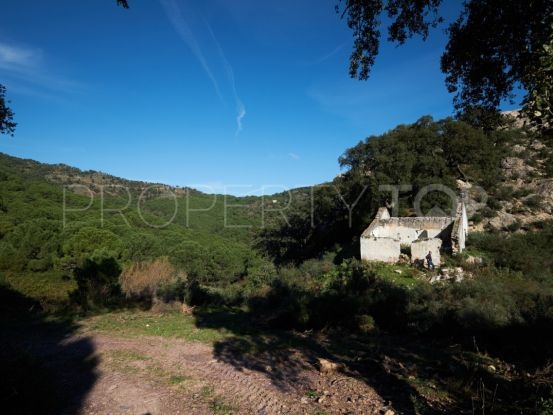 Plot for sale in Casares | SMF Real Estate