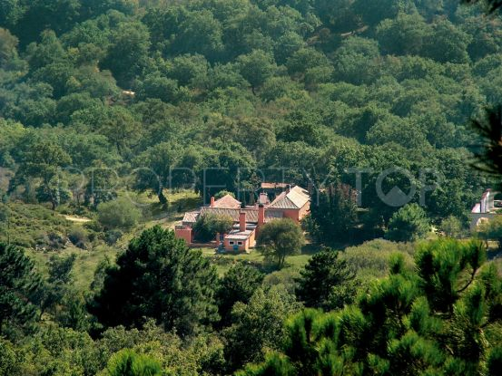 For sale 5 bedrooms finca in Alcala de los Gazules | SotoEstates